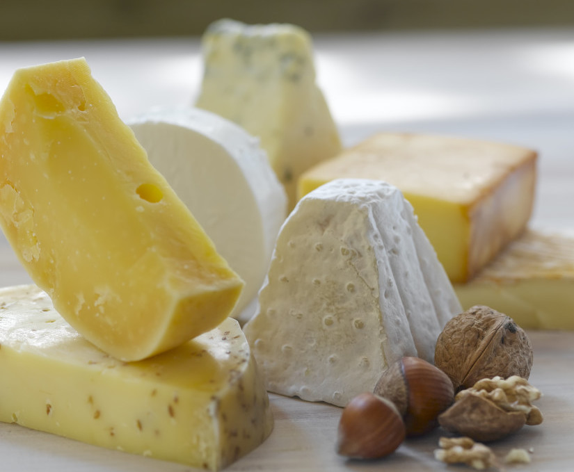 Win tickets to Cheesefest on NZ Mummy blog