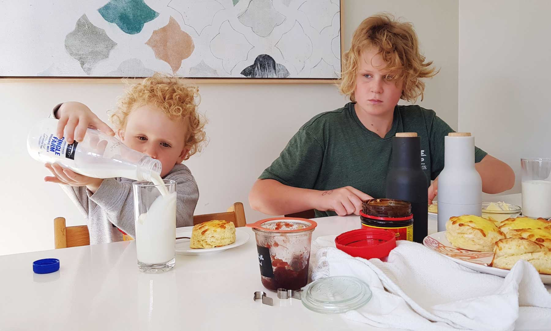New Zealand's Top Mummy Blogger Parenting Travel Blog Family Organic Milk